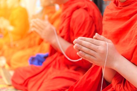 Healthpally on Monk Pepper Studies' proven Health Benefits